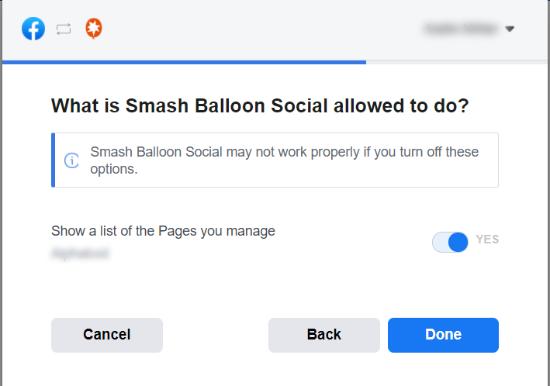 به Smash Balloon اجازه دهید از صفحه استفاده کند