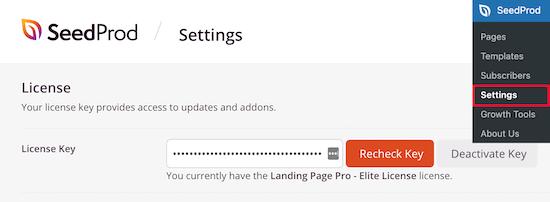 کلید مجوز SeedProd را وارد کنید